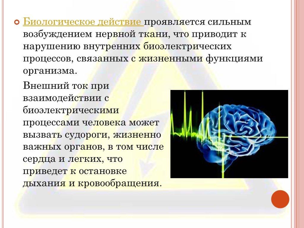 Действие электрического тока на организм человека и виды поражений