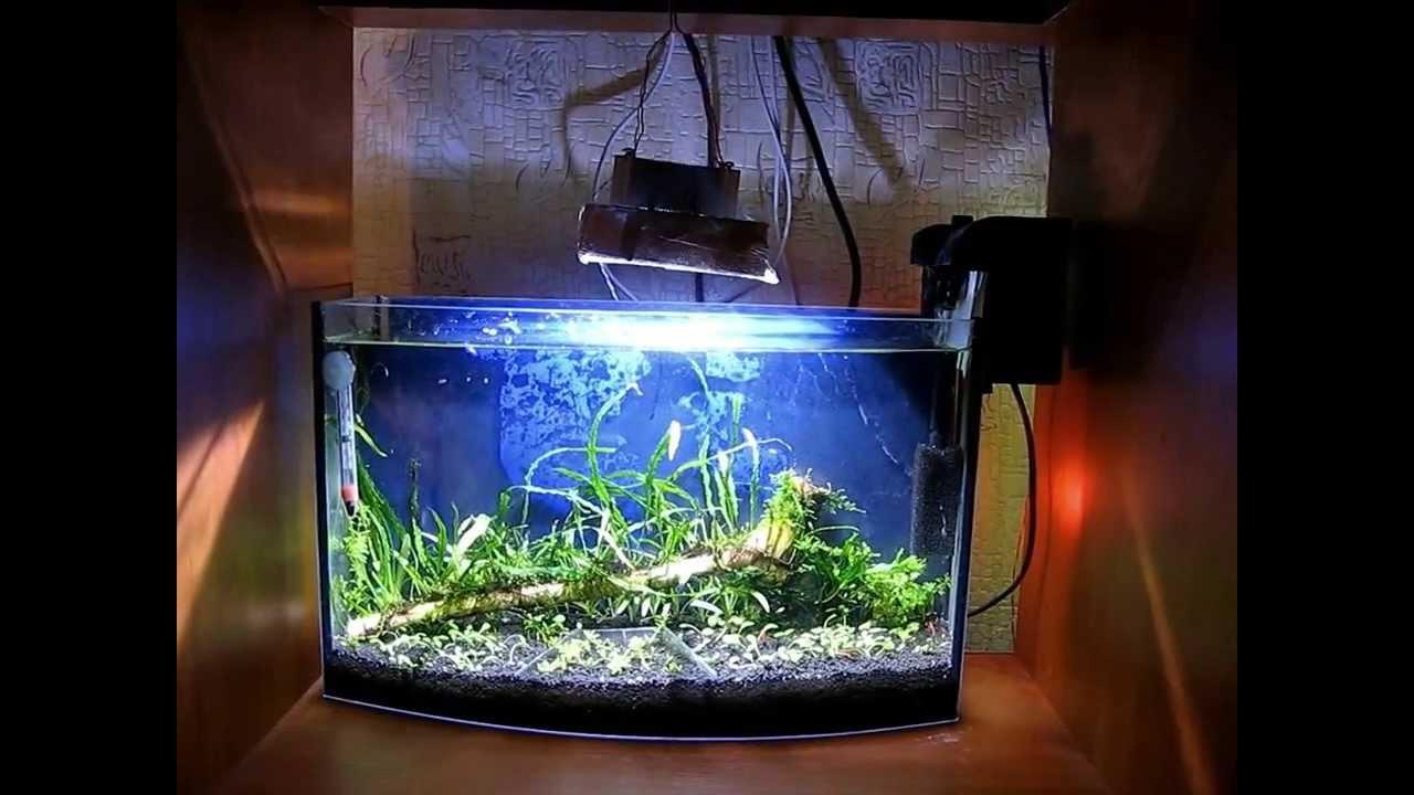 Светодиодное освещение аквариума.