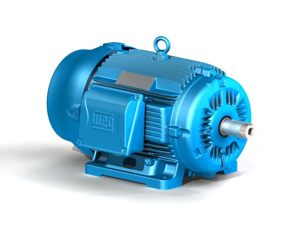 Синхронный электродвигатель с обмоткой возбуждения