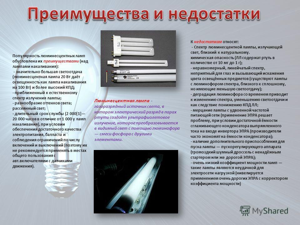 Основные правила утилизации ламп: что важно знать каждому человеку