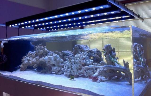 Расчет светодиодного освещения для аквариума